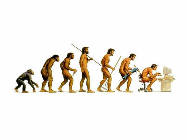 evolution-resized-600