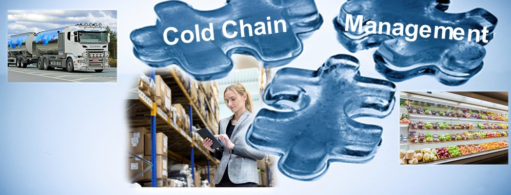 IoT Analytics and Cold Chain Management